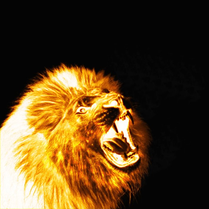 roaring_lion_on_fire_by_saify02-d51e6wk
